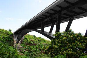 ponte-della-ravine-fontaine-isola-della-riunione-vertic